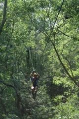 <h5>Zip Line Tours in Ocean Isle Beach #7</h5><p>                                                                                                                                                                                                            </p>