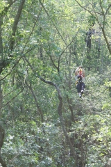 <h5>Zip Line Tours in Ocean Isle Beach #9</h5><p>                                                                                                                                                                                                            </p>