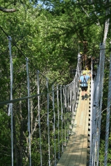 <h5>Zip Line Tours in Ocean Isle Beach #20</h5><p>                                                                                                                                                                                                            </p>