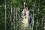 <h5>Zip Line Tours in Ocean Isle Beach #21</h5><p>                                                                                                                                                                                                            </p>