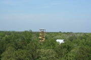 <h5>Zip Line Tours in Ocean Isle Beach #37</h5><p>                                                                                                                                                                                                            </p>