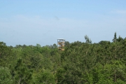 <h5>Zip Line Tours in Ocean Isle Beach #28</h5><p>                                                                                                                                                                                                            </p>