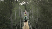 <h5>Zip Line Tours in Ocean Isle Beach #76</h5><p>                                                                                                                                                                                                            </p>
