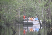 <h5>swamp boat tour #9</h5><p>                                                                                                      </p>