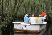 <h5>swamp boat tour #10</h5><p>                                                                                                      </p>